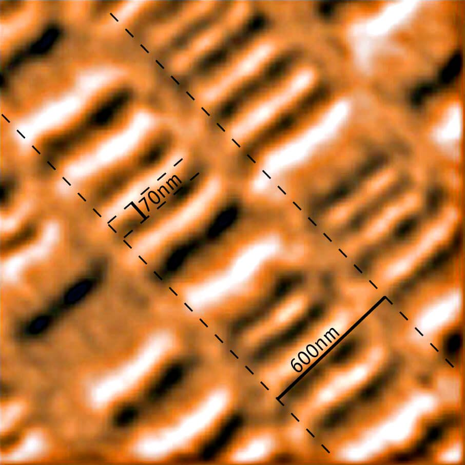 Magnetic force microscopy (MFM) image of a harddisk platter