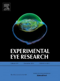 Differential nuclear expression of Yap in basal epithelial cells across the cornea and substrates of differing stiffness