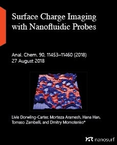 Surface Charge Imaging with Nanofluidic Probes