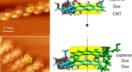 Doxorubicin Adsorbed on Carbon Nanotubes: Helical Structure and New Release Trigger