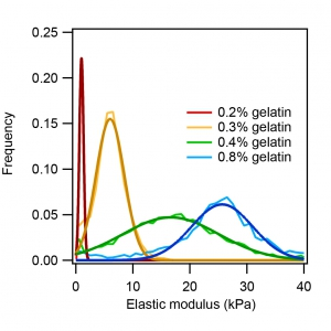 Flex-ANA measurement on gelatin hydrogels