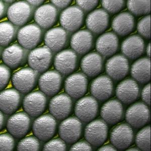 Nanosphere Lithography