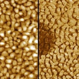 Lateral force contrast on dots produced by Dip-Pen Nanolithography