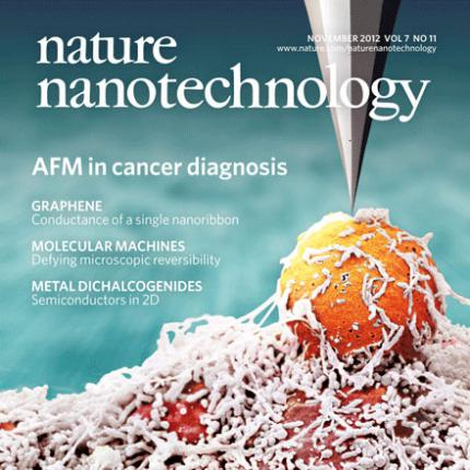 The nanomechanical signature of breast cancer