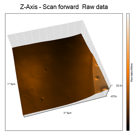 AFM topography forward scan, lateral force z-axis