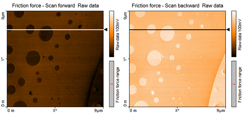 lateral force AFM images
