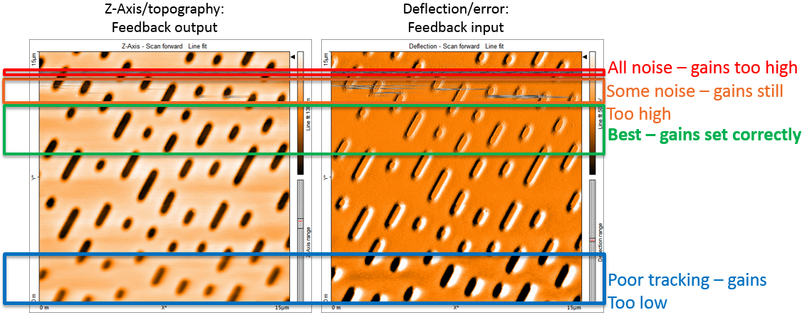Different gain settings affect the feedback and AFM image