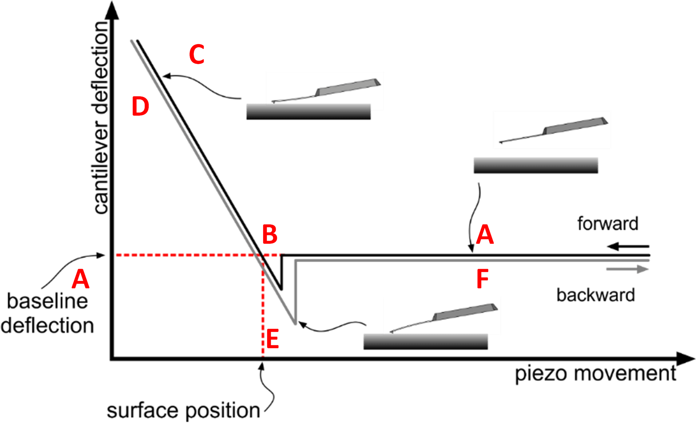 force spectroscopy AFM schematic