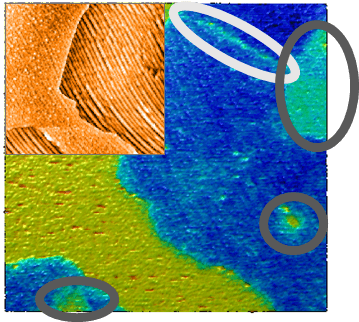 Kelvin probe force microscopy (KPFM) image of graphene deposited on copper.